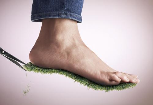 Couper l'herbe sous le pied (1)
