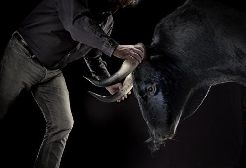 Prendre le taureau par les cornes (1)