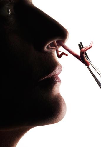Tirer les vers du nez (1)