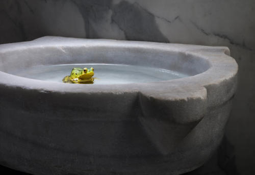 Une grenouille de bénitier (1)